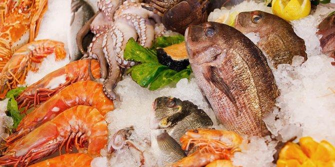 Ikan Laut Memiliki Sejuta Manfaat Untuk Tubuh